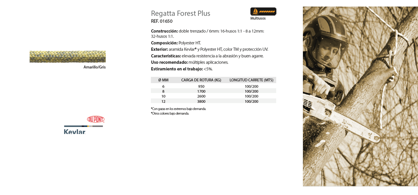 Regatta Forest Plus